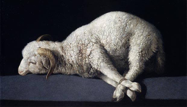 The Passover Lamb